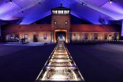 70ste verjaardag van Auschwitz-bevrijding Stock Foto's