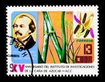 150ste Verjaardag voor Alvaro Reinoso, serie, circa 1979 Stock Afbeeldingen