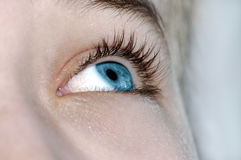 Steadfast Sight In The Future 2. Stock Photography
