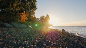 Steadicam射击了:一个少妇的剪影 她走与狗靠近湖或海在日落 非常美丽的天空 影视素材