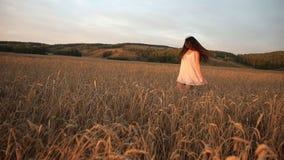 Steadicam获得射击了一名年轻快乐的妇女跑通过麦田的乐趣 慢的行动 影视素材