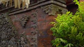 Steadicam που πυροβολείται του Puri Saren Royal Palace, Ubud πρεσών απόθεμα βίντεο