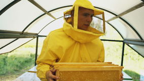 Steadicam сняло человека beekeeper идя при деревянные рамки работая в пасеке акции видеоматериалы