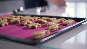 The steadicam shooting of the cookies on the baking tray. Close-up. No face. stock video