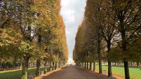 Autumn scene of tree lined promenade in Luxembourg Gardens. Paris, France. Steadicam shot of strolling on promenade lined with high trees. Walking in Luxembourg stock video footage