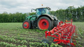Steadicam shot: Tractor pulls on the field cultivator: which cuts the weeds stock video footage