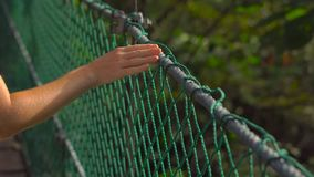 Steadicam shot of a young woman walking on the hanging suspension bridge in the Eco Park in the Kuala Lumpur city.  stock footage