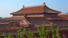 Steadicam sköt av en inre del av Forbiddenet City - forntida slott av Kina kejsare stock video
