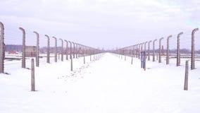 Steadicam spacer między drutów kolczastych ogrodzeniami zniszczony koncentracyjny obóz w zimie Czczości i zniszczenia pojęcia zbiory