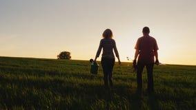 Steadicam a tiré : Agriculteurs - un homme et une femme marchant à travers le champ au coucher du soleil Portez une jeune plante  banque de vidéos