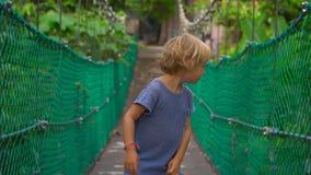 Steadicam tiró de un niño pequeño del kute que se divertía en puente colgante de la ejecución en el parque de Eco en la ciudad de metrajes