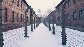 Steadicam walk between barbed wire fences. Auschwitz Birkenau, German Nazi concentration and extermination camp stock video
