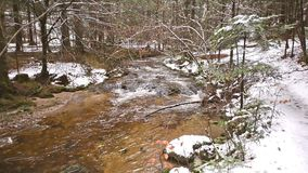 Steady cam footage, mountain river, stream, creek with rapids in late autumn, early winter with snow, vintgar gorge. Steady cam footage, mountain river, stream stock footage
