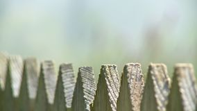 Pointed Peaks on Wooden Fence. Steady, extreme close up shot of the pointed peaks of a wooden fence stock video footage