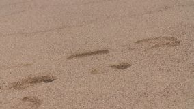 Footprints in sand. Steady, medium close up shot of footprints in the sand of a beach stock video footage