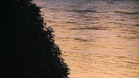 River with Sunset Color Reflection stock video