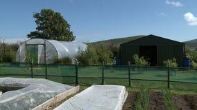 Greenhouse And Barn In Farm Area. Steady, medium wide shot of a greenhouse and barn in a fenced in farm area stock video