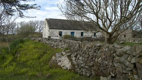 Stone Fence And Cottage. Steady, medium wide shot of a stone fence surrounding a cottage and yard stock footage
