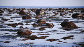 Steady Panning Video of a Low Tide. Somewhere in Canada stock video footage