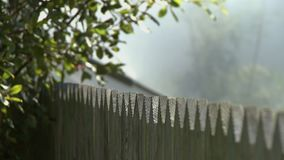 Pointed Wooden Fence. Steady, sharp angled, medium close up shot of a pointy wooden post fence stock footage