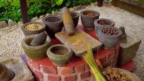 Steadycam射击了热带烹调香料的汇集在石碗的 影视素材