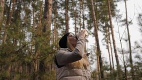 Steadycam shot. Woman drink coffee in the pine forest