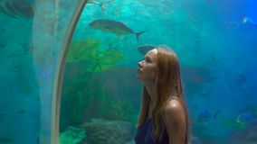 Steadycam shot of a Young woman walk inside of an aquarium pipe looking at fishes with a ray of light at a background. Steadycam shot of a young Young woman walk stock video