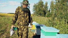 Steadycam a tiré de l'apiculteur marchant et inspectant sa rangée de champ se développant proche de ruches banque de vidéos