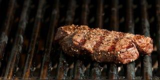 steak Arkivbild