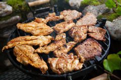Steak and chicken meat grilled on barbecue. In garden Royalty Free Stock Photos