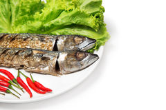 Steak fish mackerel grilled Saba and ingredient side dish isolated on white Stock Images