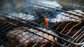 Steak on the grid. Steak on a metal grid at the summer campfire Royalty Free Stock Image