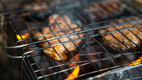 Steak on the grid 2. Steak on a metal grid at the summer campfire Stock Photography
