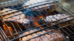Steak on the grid 3. Steak on a metal grid at the summer campfire Royalty Free Stock Images