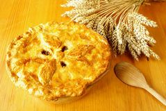 Steak and kidney pie royalty free stock photography