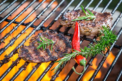 Steak roasted on the fire grill Royalty Free Stock Images