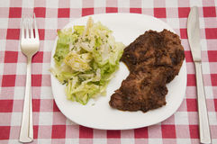 Steak and salad. Steak in onion sauce with salad Stock Images