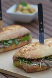 Steak Sandwich Royalty Free Stock Images