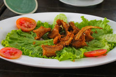 A steak from snake, Thailand. A steak from snake, Pattaya Thailand Stock Photo