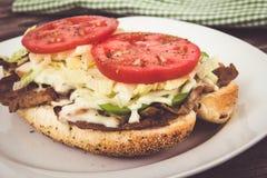 Steak sub sandwich Royalty Free Stock Image