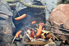 Steaking sausages on fireplace. Traditional Finnish way to cook sausages on fire Royalty Free Stock Photo