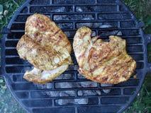 steaks Royaltyfria Foton
