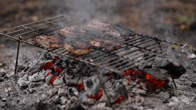 Steaks auf Grillgrill stock footage