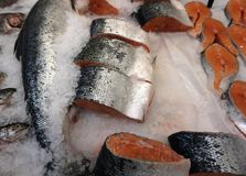 Fresh fish in ice crumb. Steaks and carcasses of fish are lying on the ice crumb royalty free stock photography