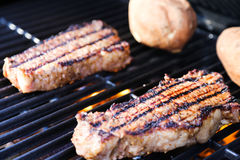 Steaks on grill Stock Photos