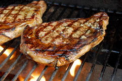 Free Steaks On The Grill Stock Images - 20262294