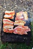 Steaks på grillfest royaltyfria bilder