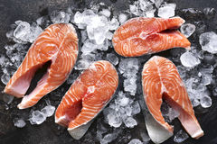 Steaks of raw salmon on ice.Top view with space for text. Steaks of raw salmon on ice on a dark slate,stone or metal background.Top view with space for text Stock Photo