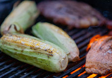 Steaks and salmon on a grill. Hot dogs, steaks and salmon on a grill Royalty Free Stock Images
