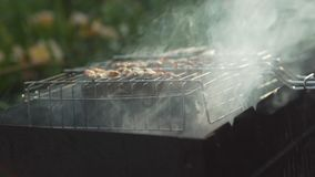 Steaks from trout grilled, close-up. Steaks of trout baked on grill, close-up stock footage